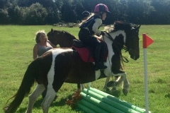 Purbeck & District Riding Club