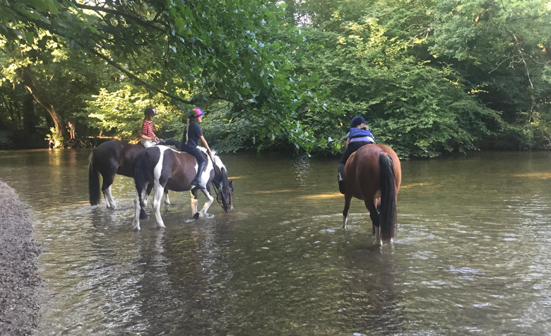 Purbeck District Riding Club